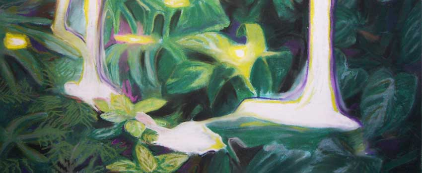 L'artiste peintre Marine Karbowski